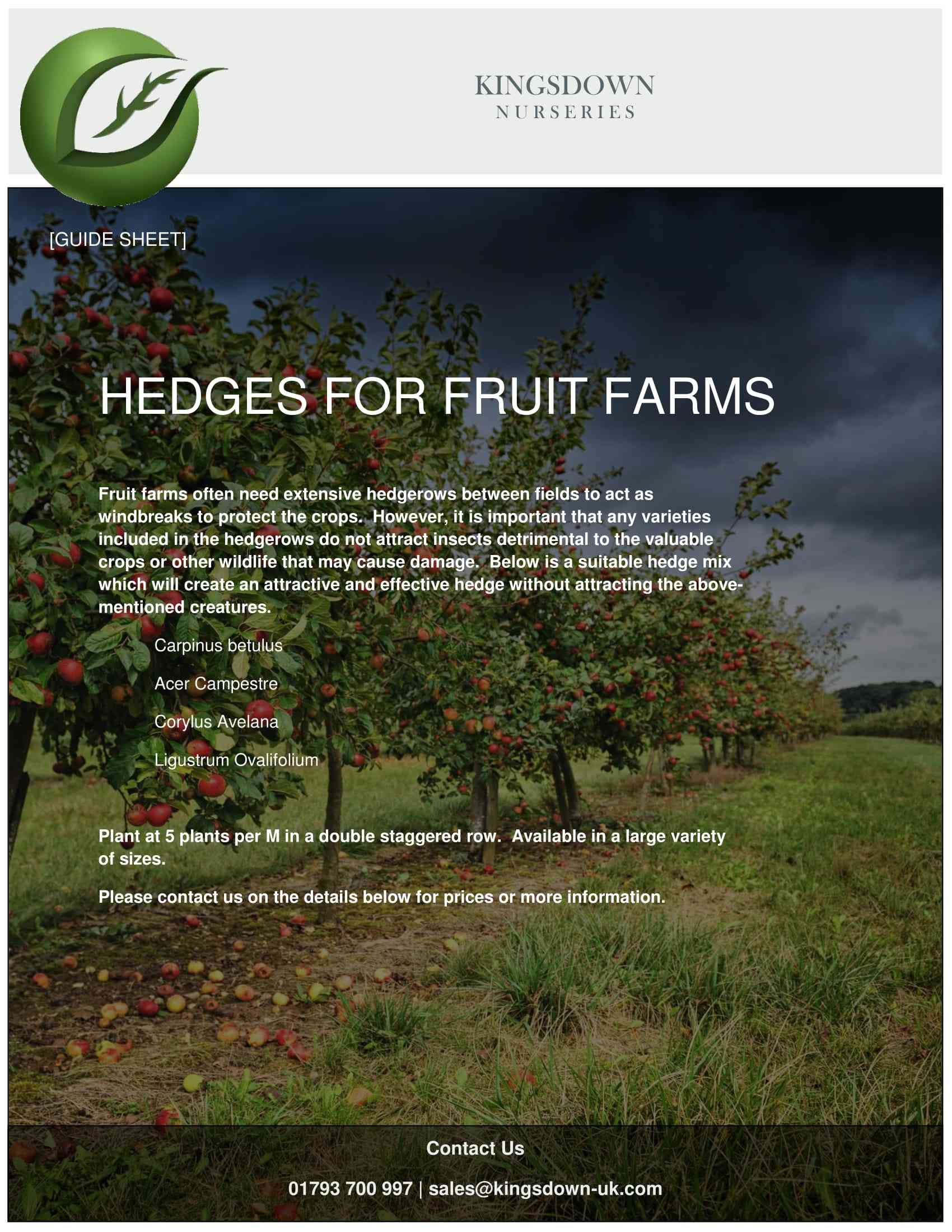 Hedges for Fruit Farms