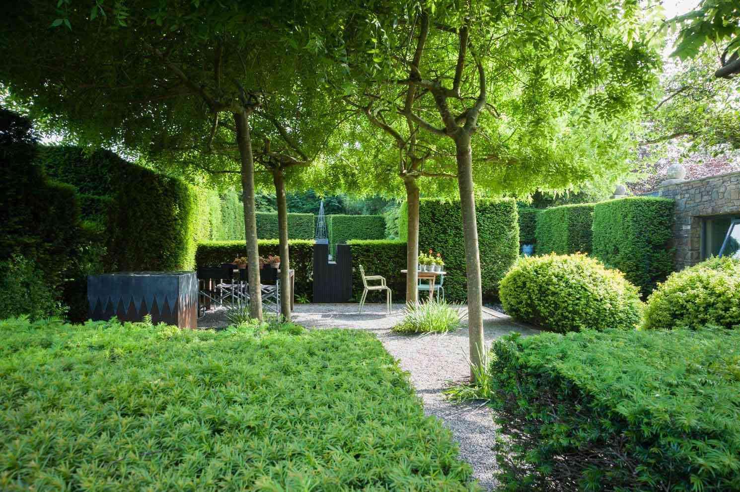 Whole Plant Nursery Uk Trees