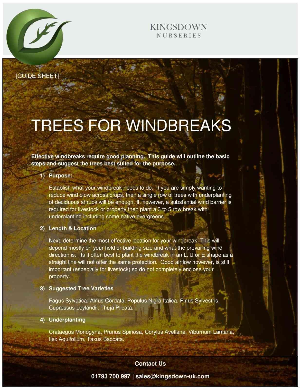 Windbrakes PDF